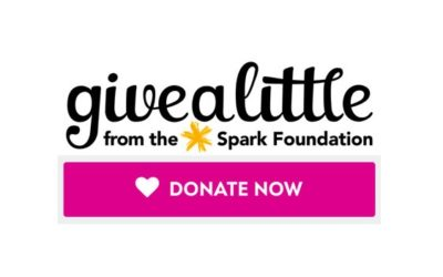 Give a little – Help From Home 2021